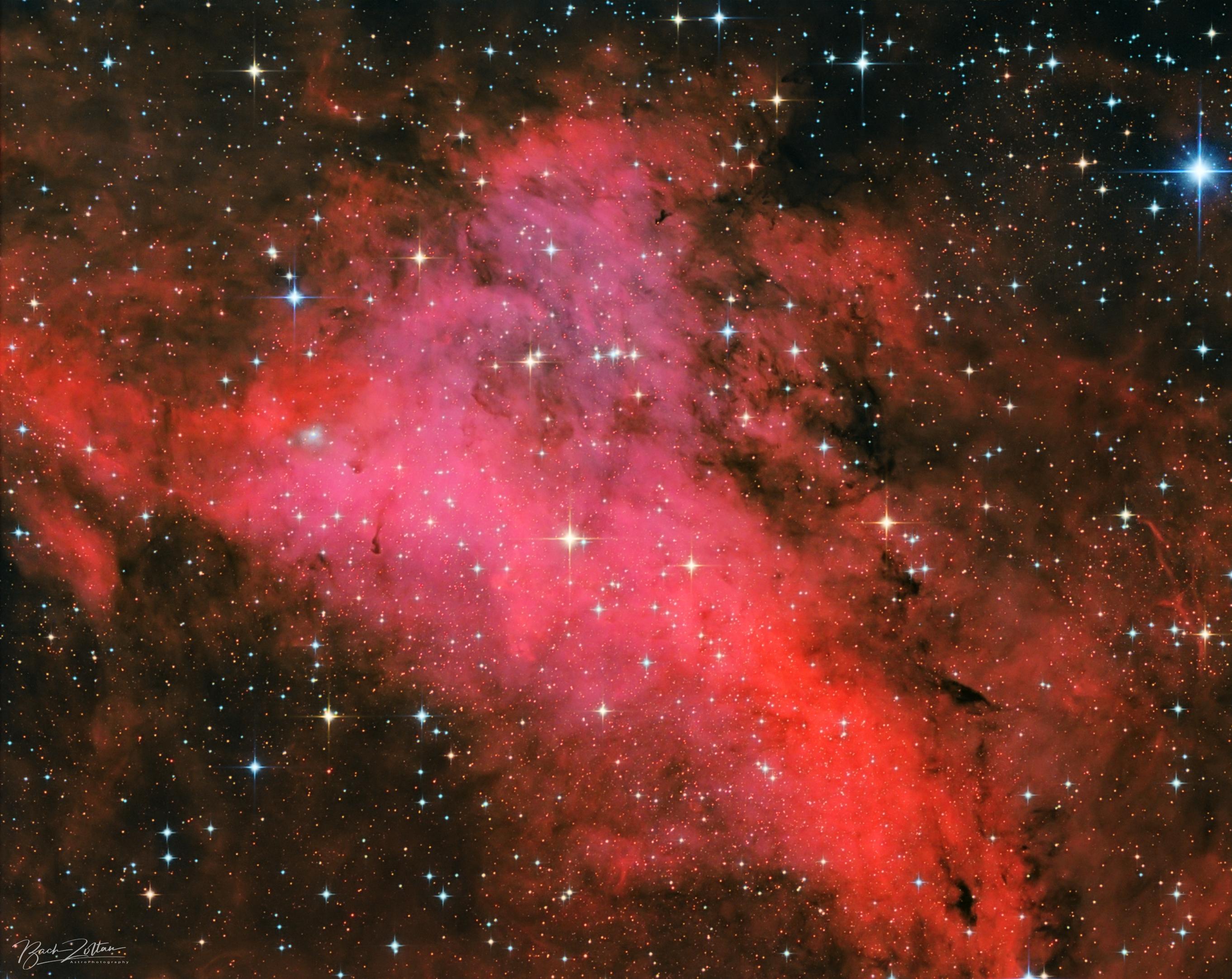 IC1318a