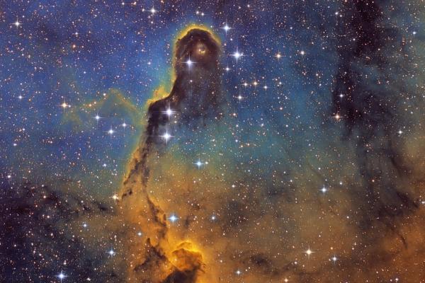 Elephant's Trunk Nebula