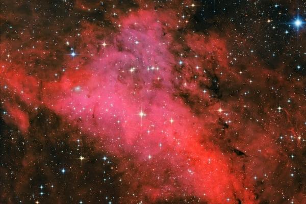 IC1318a (Sadr alrégió)
